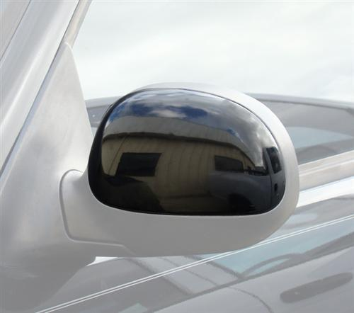 SVT Lightning Outer Door Mirror Cover, LH (2000)