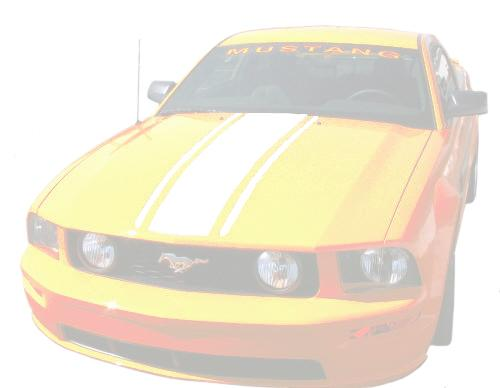 Mustang Boss Hood Stripe White (05-09)