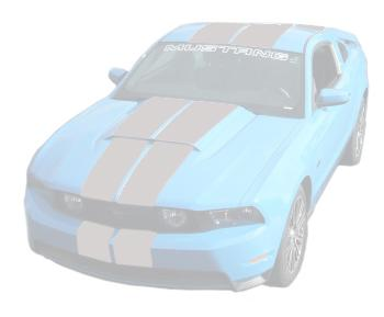 Mustang Lemans Stripes (Hood Scoop) Silver (10-12)