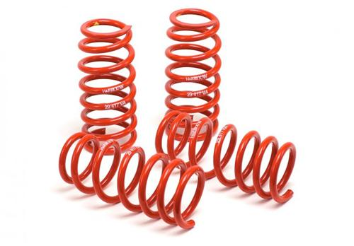 99-04 Mustang Cobra H&R Race Springs - 99-04 Mustang Cobra H&R Race Springs