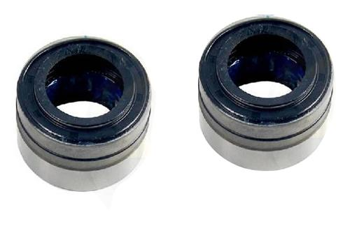 Rear Axle Repair Bearing And Seal Kit (93-04)