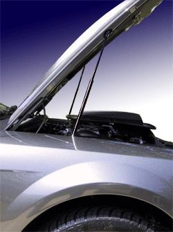 Mustang Quicklift Hood Supports (99-04)