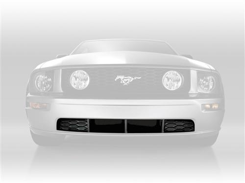 Mustang GT Lower Front Grille (05-09)