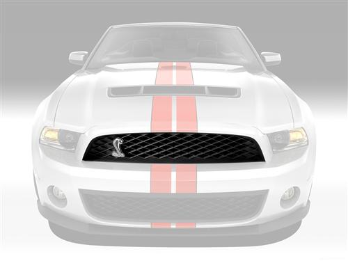 Mustang Upper Grille with Emblem (10-12) GT500