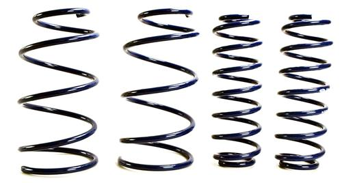 Ford Racing Mustang 2013 Cobra Jet Drag Spring Kit  (05-14) M5300RA
