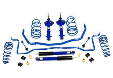Mustang Roush Suspension Kit (05-10)