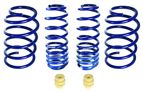 Roush Mustang Extreme Lowering Spring Kit (05-14) 402331 - Roush Mustang Extreme Lowering Spring Kit (05-14) 402331