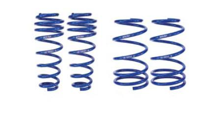 Roush Mustang Extreme Lowering Spring Kit (05-14) 402331
