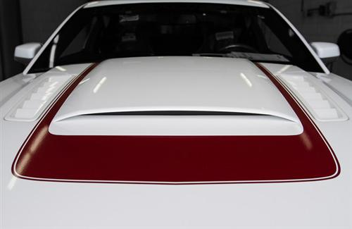Roush Mustang Hood Scoop Kit W/Grille Insert And Hardware (10-12) AR3Z16
