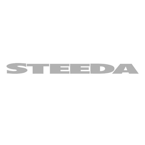 Steeda Mustang Windshield Banner Silver (79-14)