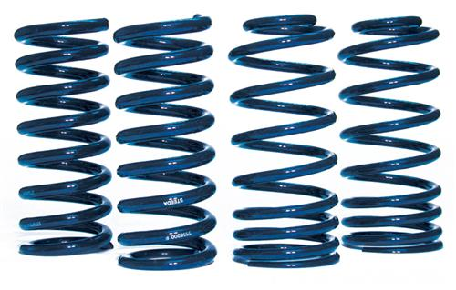 Steeda Mustang Sport Lowering Springs Kit (79-04)