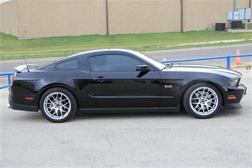 SVE Mustang Progressive Rate Lowering Springs Silver (05-14) - Picture of SVE Mustang Progressive Rate Lowering Springs Silver (05-14)